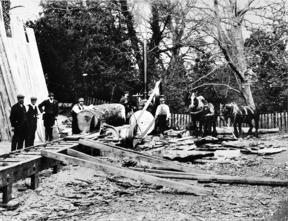 Family sawmill photograph,Long Bench Saw