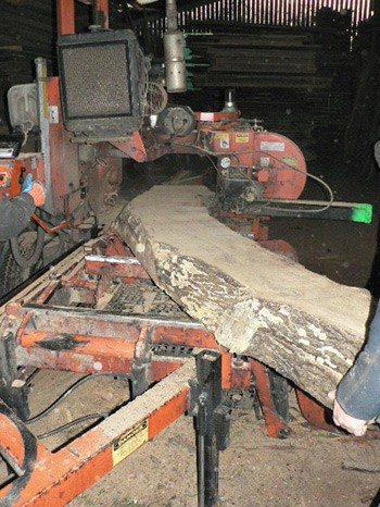 Woodmizer Saw Mill - Interesting Timbers